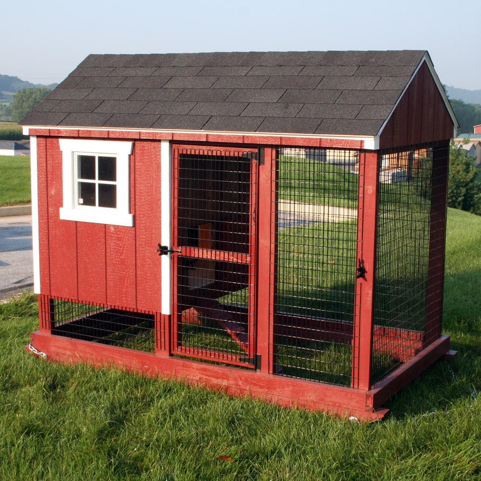 Greenhouse Chicken Coop Plans Modern Home Interior Ideas