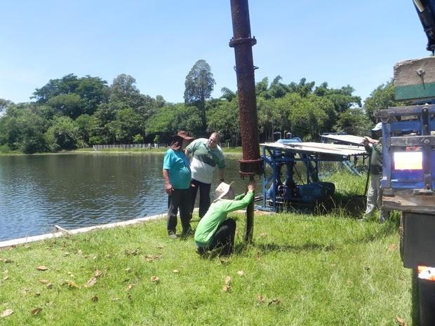 Cobra sucuri é retirada de tubulação de água em Cordeirópolis (Foto: Eliara Clemente/Prefeitura de Cordeirópolis)