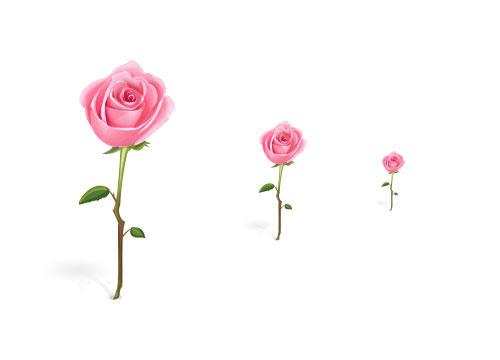 無料素材 茎のついたピンクのバラのかわいいイラストアイコン素材