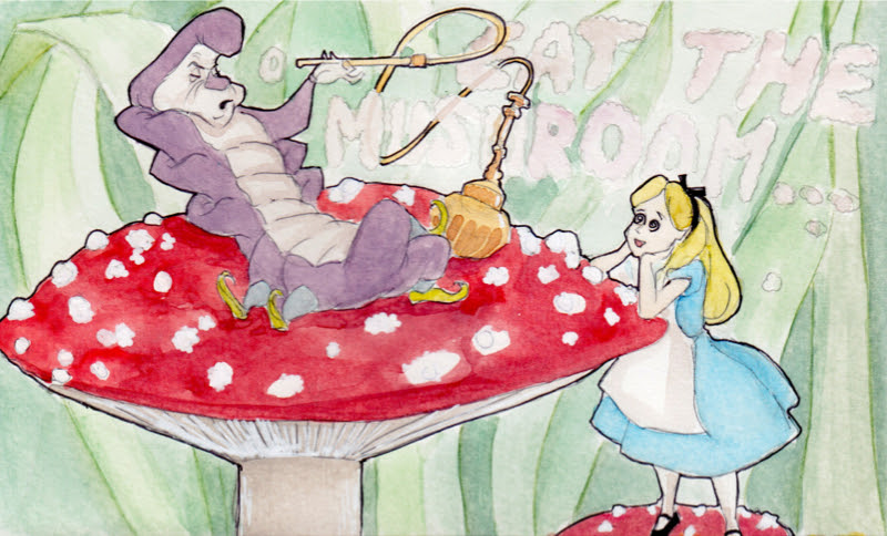 Alice in Mushroom Wonderland Illustration