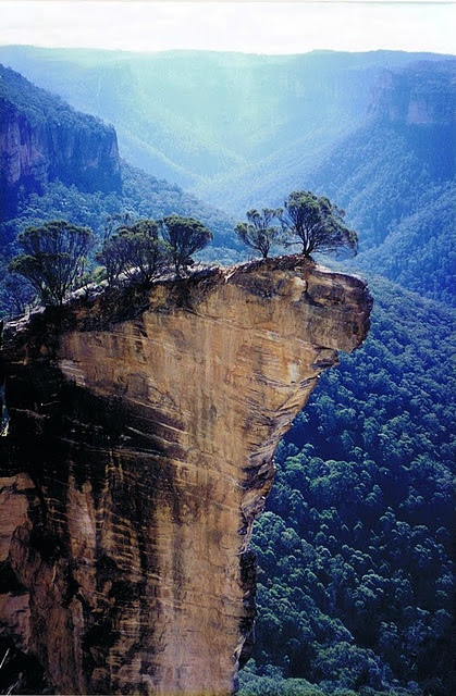 Sheer sandstone cliffs in the Blue Mountains, NSW.  I would love to see these cliffs, but I would not like to be on top of them (strong fear of heights).