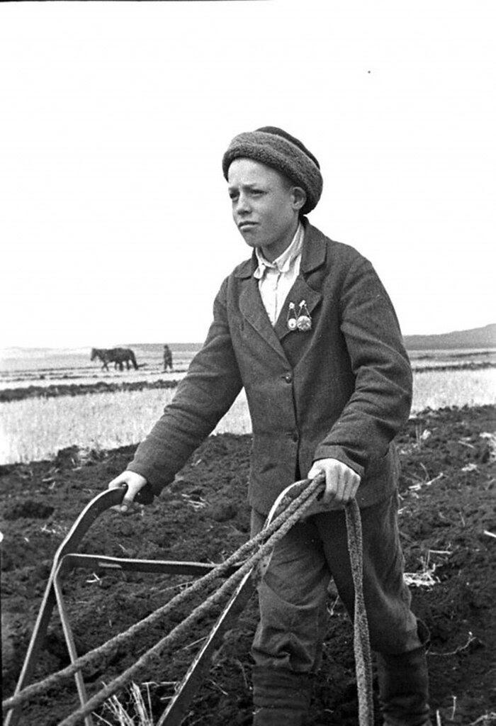 14-летний пахарь колхоза им.Коминтерна Илья Дружков на пахоте паров. 1942 г.Красноярский край.