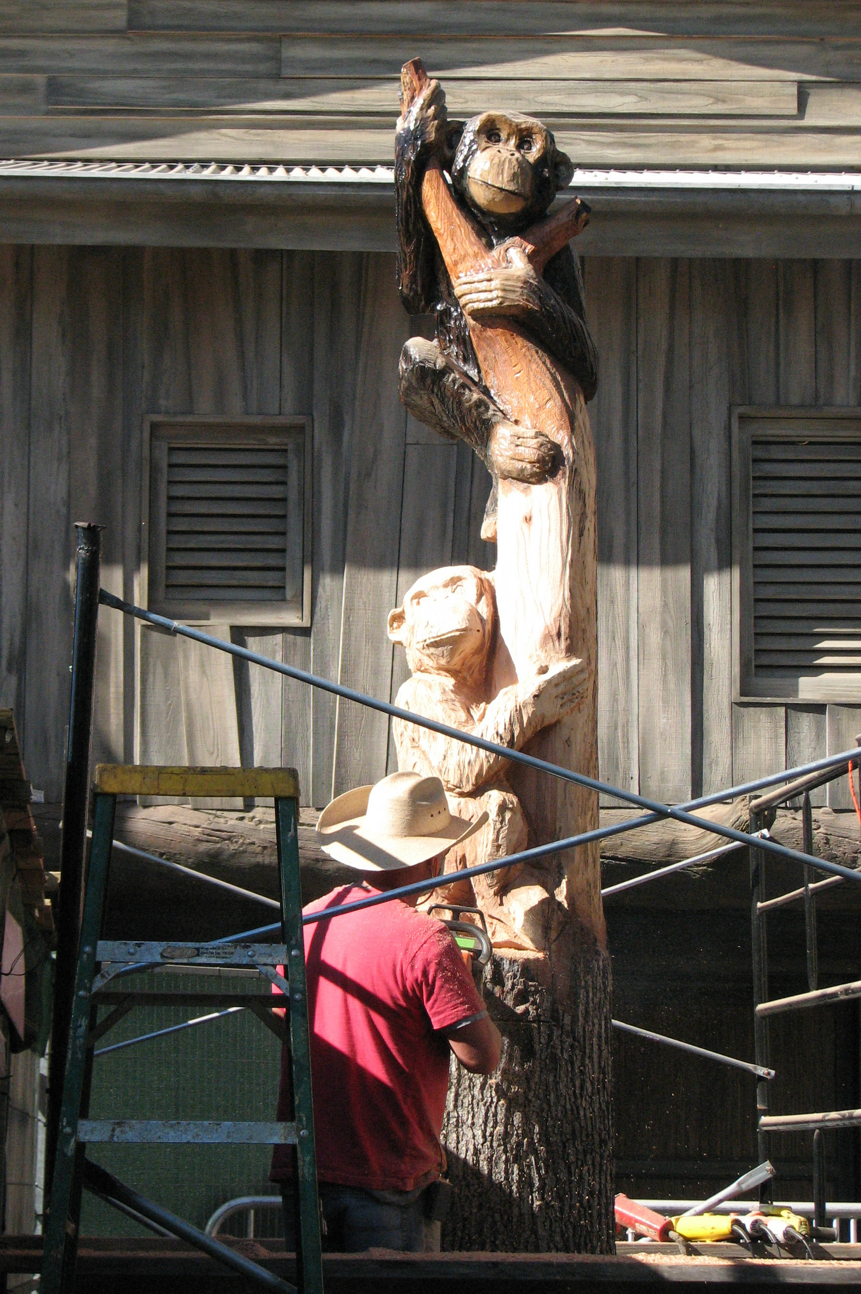 Carving a Dead Tree