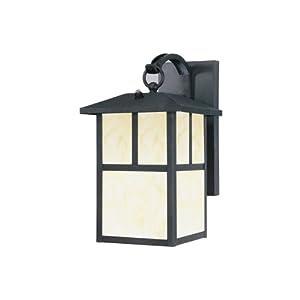 Amazon.com: Westinghouse Lighting 6482900 Energy Star Dusk-to-Dawn ...