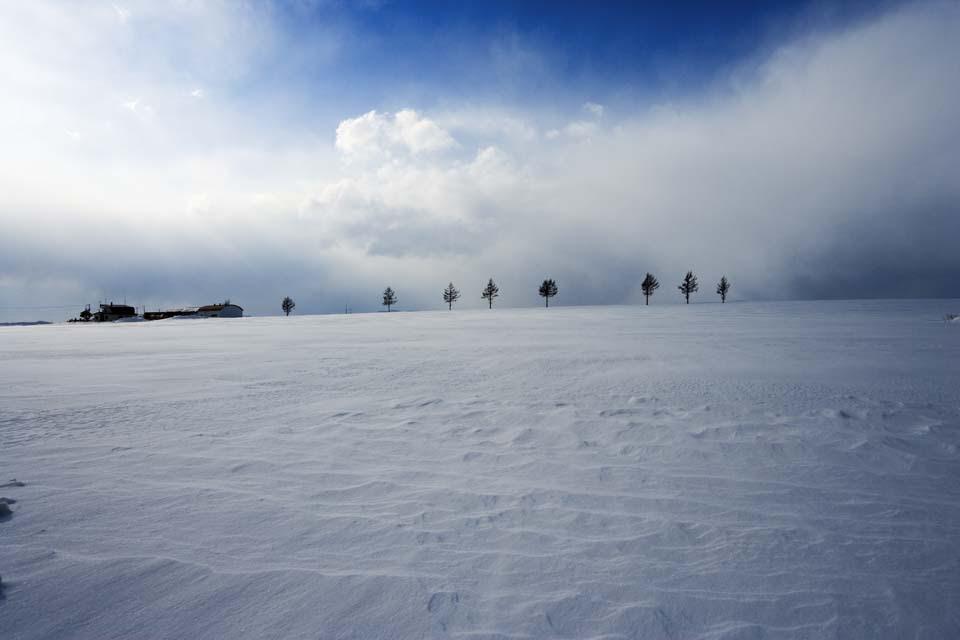 ゆんフリー写真素材集 No 3378 メルヘンの丘 日本 北海道