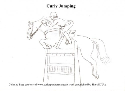 The CSI 2014 Coloring Contest | Curly Sporthorse International