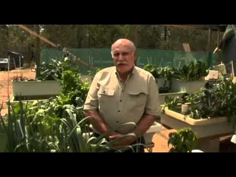 Aquaponics Made Easy And Exposed. How Easy It Is To Aquaponic.