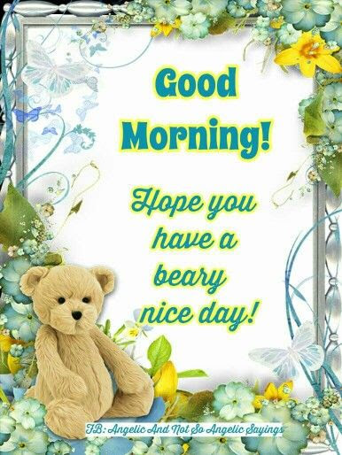 Good Morning Hope You Have A Beary Nice Day Pictures Photos And