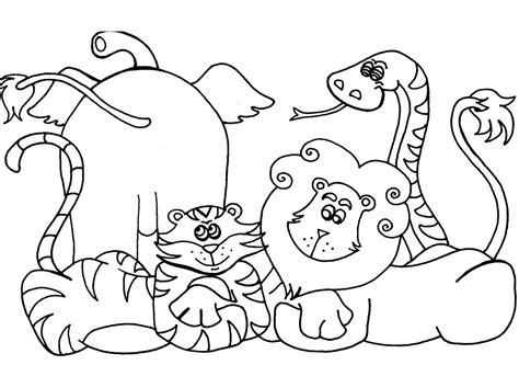 african animal coloring page  coloring pages