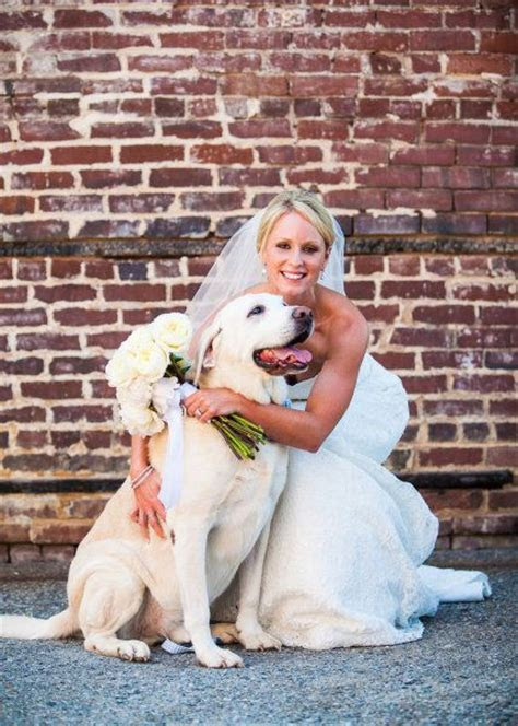 10 Best images about Wedding Dogs on Pinterest   Wedding