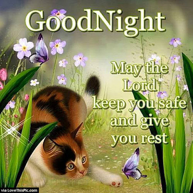 Goodnight May The Lord Bless You Pictures Photos And Images For