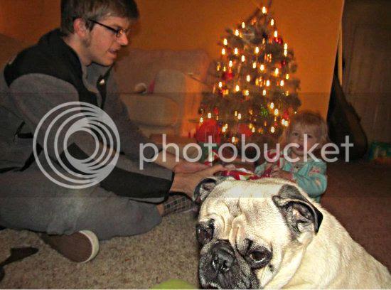 Christmas 2012: Milo