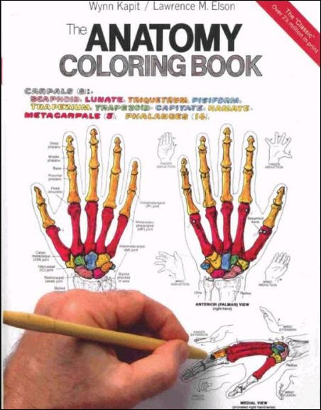 850+ The Anatomy Coloring Book Pdf Download Free Images