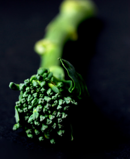 broccolini© by Haalo,