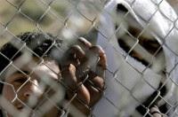Σύλληψη διακινητών παράνομων μεταναστών στον Έβρο