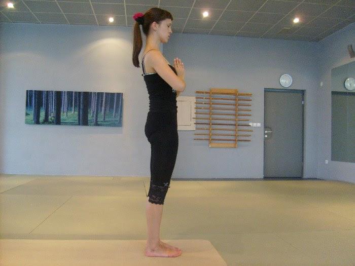 http://www.jogaportal.si/wp-content/uploads/2010/10/pozdrav-soncu-joga-2.jpg
