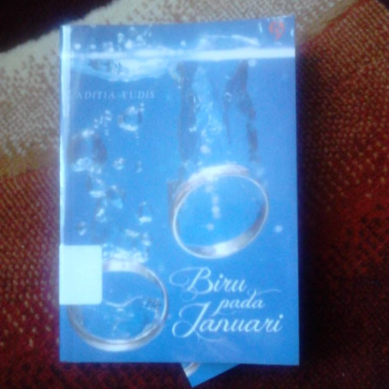 biru_pada_januari_by_aditia_yudis_uploaded_by_irabooklover
