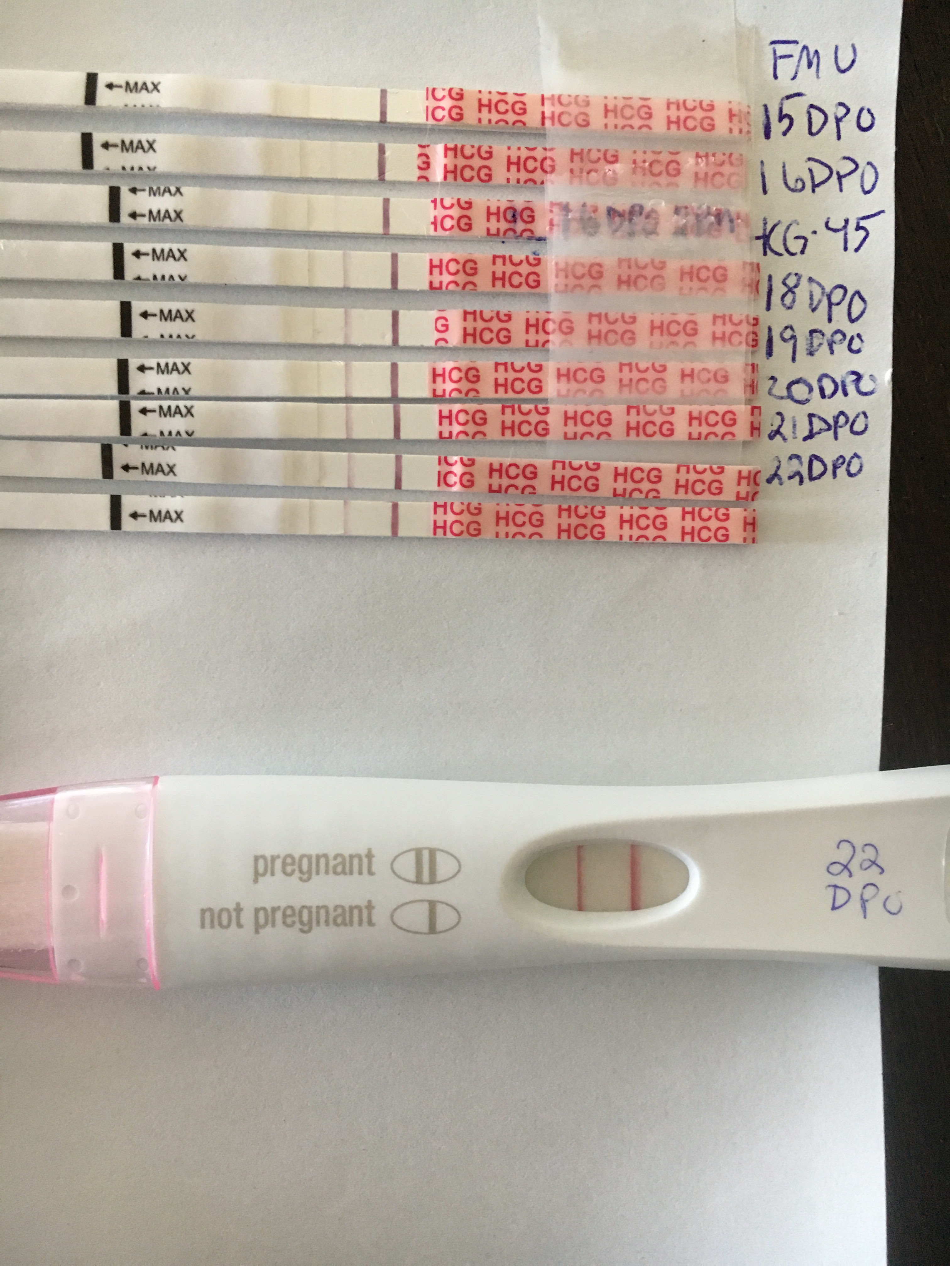 Pregnancy Test Lines Getting Lighter Miscarriage Pregnancywalls