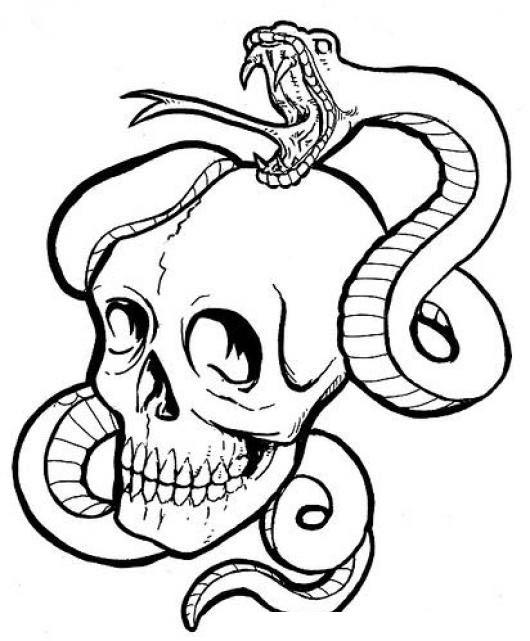 Dibujo De Un Craneo Con Una Culebra Serpiente Para Pintar Y Colorear