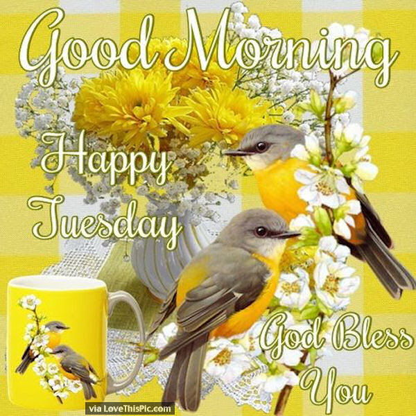 Good Morning Have A Happy Tuesday God Bless You Pictures Photos