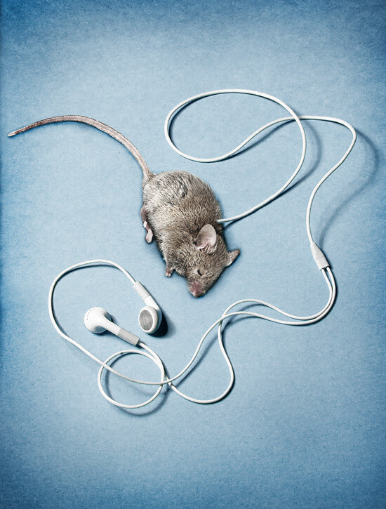 Deadmau5 on my iPod