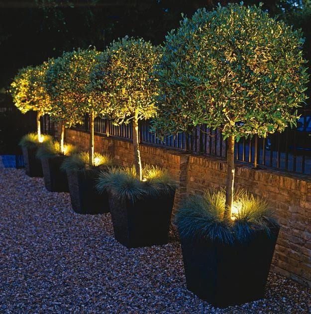 planter lights