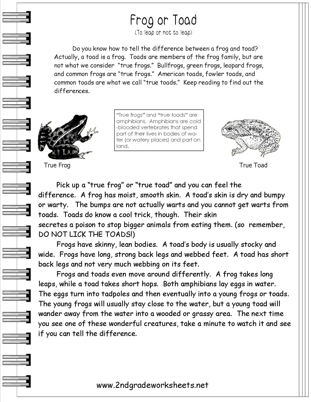 15 Best Of Informational Nonfiction Worksheets