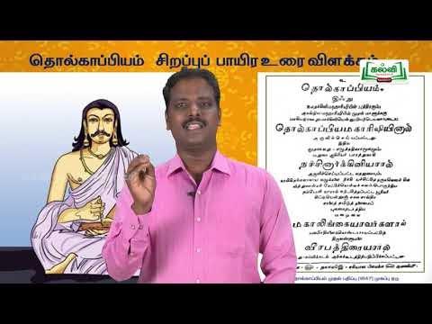 யாமறிந்த மொழிகளிலே Std 11 தமிழ் தொல்காப்பியம் பாயிர பாடல் Kalvi TV