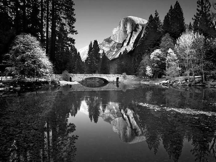 85+ Gambar Alam Hitam Putih Terbaik