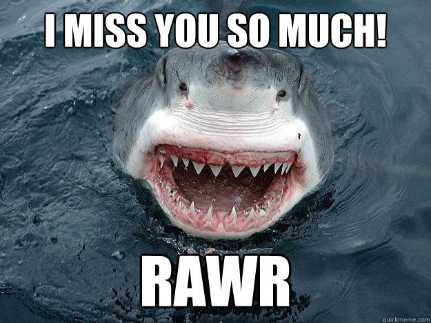 I Miss You So Much Rawr The Most Interesting Shark In The World