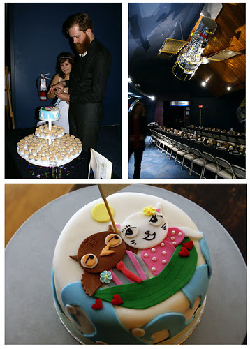 wedding cake! owl & pussycat!