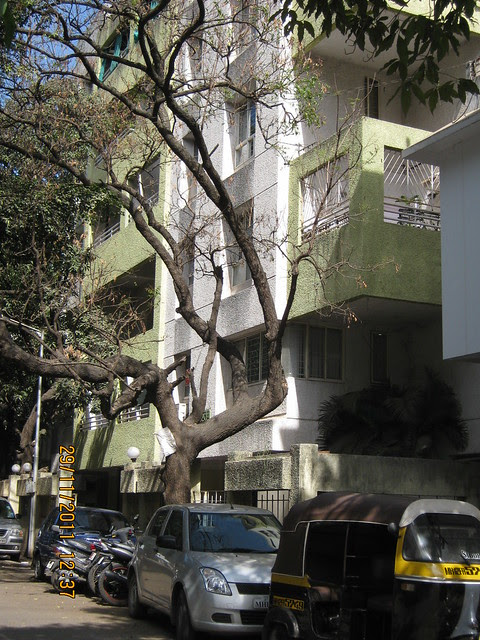 Office Building of Vastushodh Projects Pvt. Ltd. in Sheelavihar Colony  - View from Karve Road, Pune