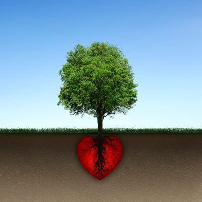 Lindos Mensajes De Reflexion Sobre El Amor Datosgratis Net