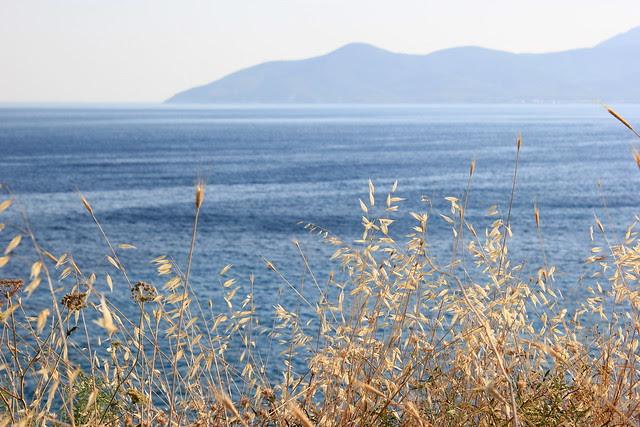 Kreikka, Samos 2012 689