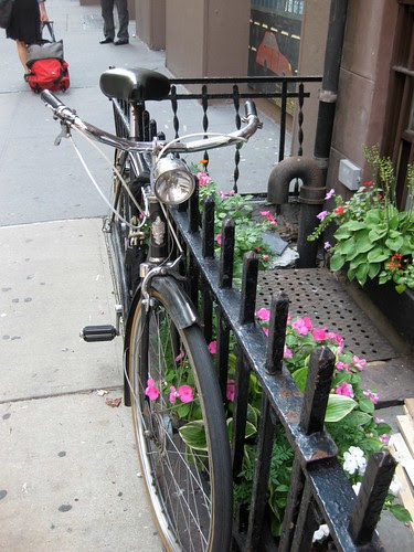 Bike and garden