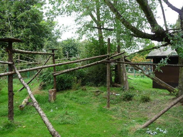 Red Panda Enclosure At Birmingham Nature Phil