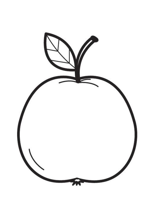 malvorlage apfel klein  x13 ein bild zeichnen