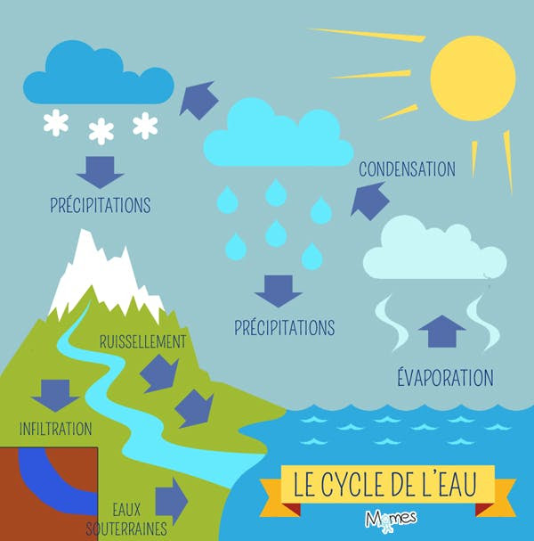 Le Cycle De Leau Momesnet