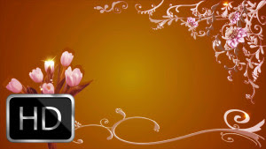 Iphone Wallpaper Hd Wedding Video Backgrounds 1080p Free Download