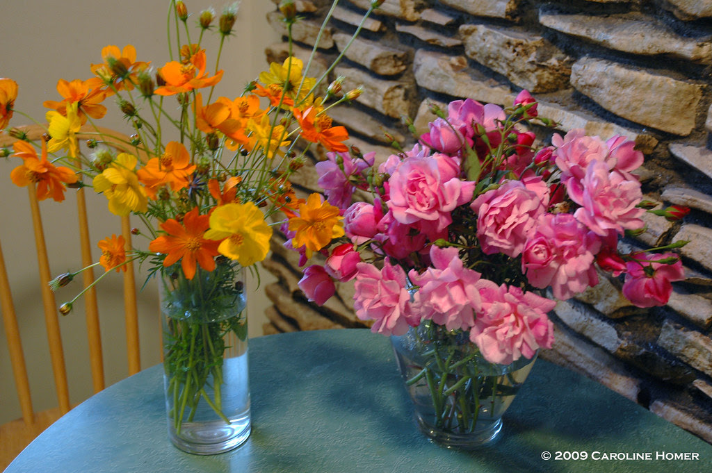 Bright Lights cosmos & Old Blush roses