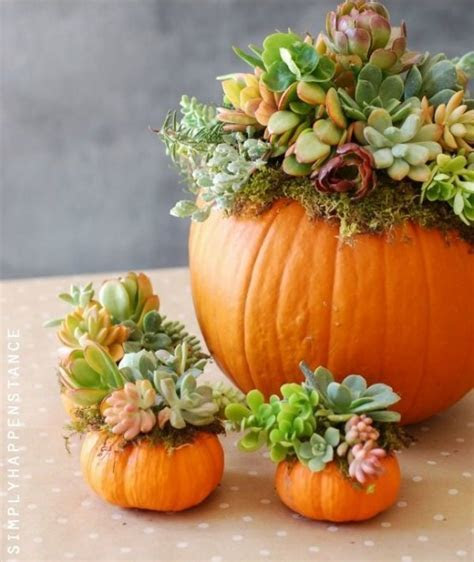 30 Beautiful Thanksgiving Pumpkin Decorations For Your