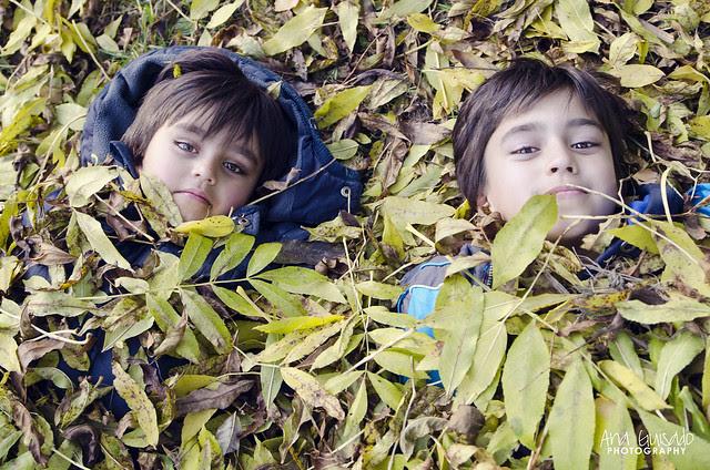 Jugando con las hojas 1