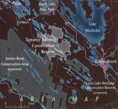 Torrance Barrens Dark-Sky Preserve   The Royal Astronomical