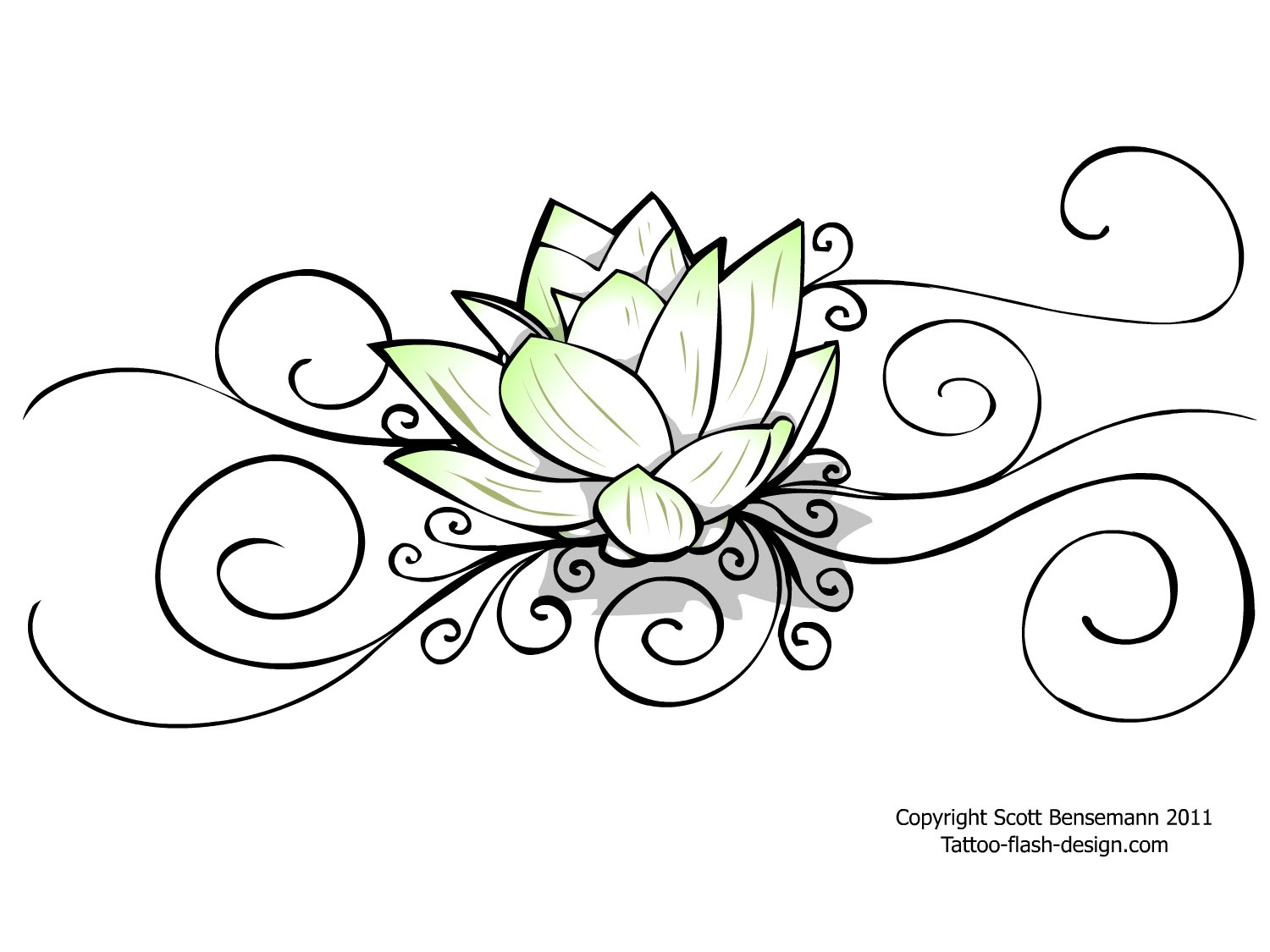 Water Lilies Drawing At Getdrawingscom Free For Personal Use