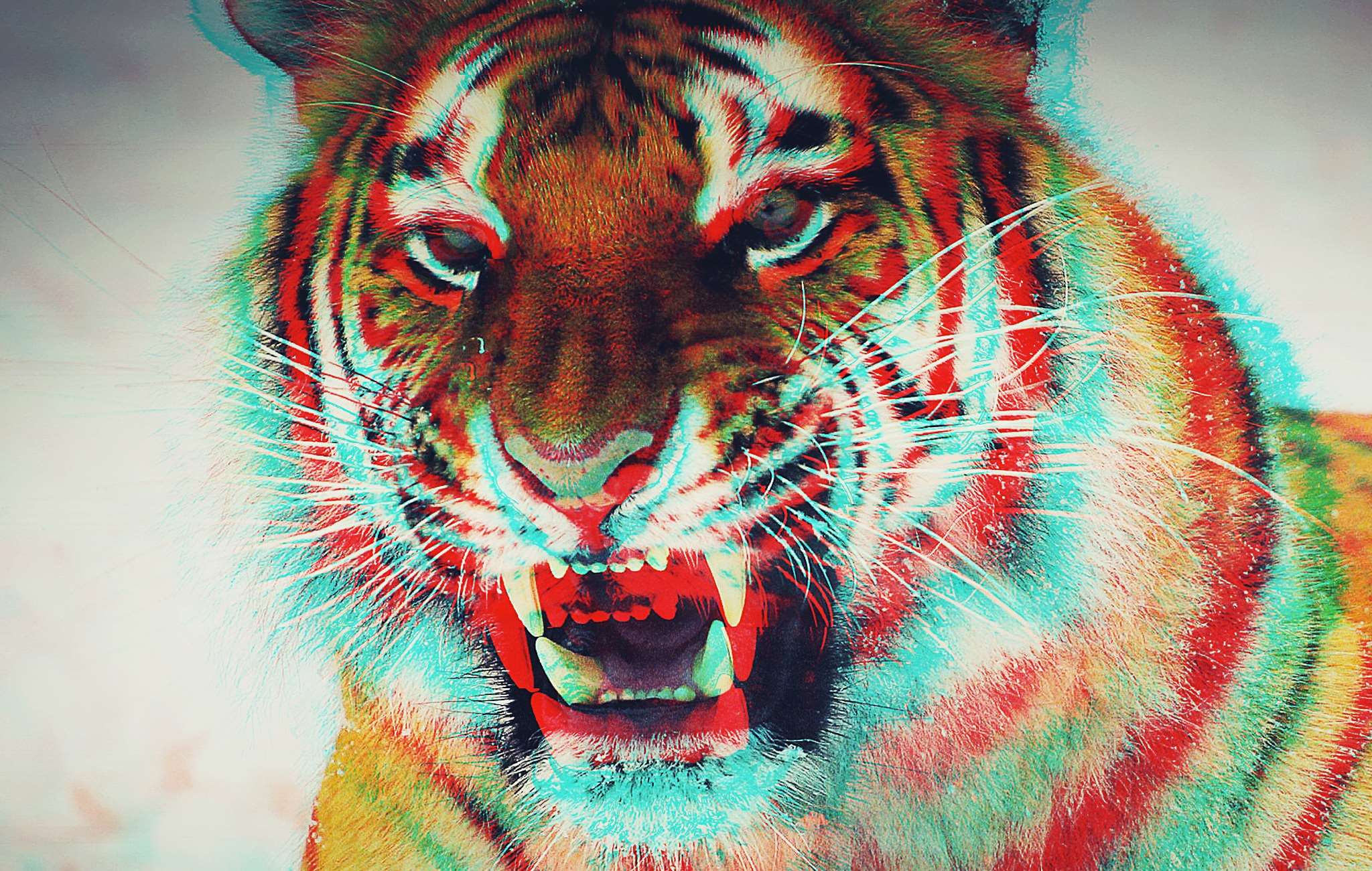 Animal Background Colorful Dimension Effect Tiger Wallpaper
