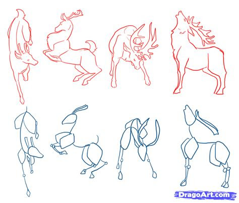 draw deer drawing deer step  step forest