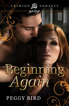 Beginning Again (Second Chance #1)