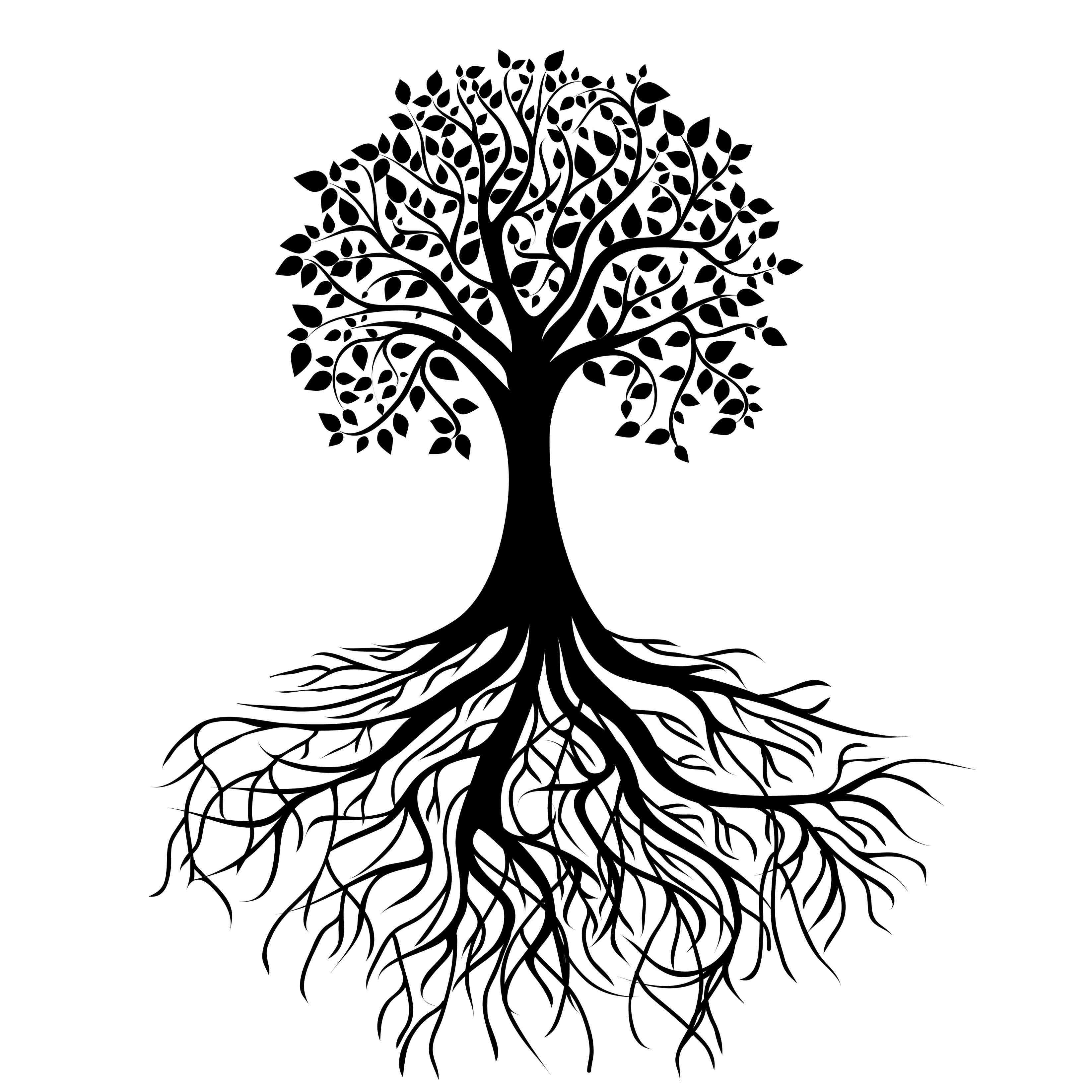Tree And Roots Silhouette At Getdrawingscom Free For Personal Use
