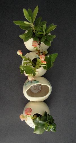 Pequenos Vasos Unidos - Vertical by Malu Serra