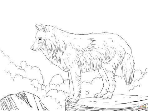 animal jam wallpaper arctic wolf  images